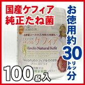送料無料 定期購入 お徳用約30リットル分 完全日本製 エステリアナチュラルケフィア 簡単発酵 自分で作るスーパーヨーグルトたね菌 ギリシャヨーグルト(水切) ホットヨーグルト 等の応用も。コーカサス ケフィアグレイン 乳酸菌 酵母 酢酸菌 ケフィアヨーグルト タネ菌