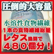 送料無料<業務用>【水溶性食物繊維】(ポリデキストロース)パウダー1600g