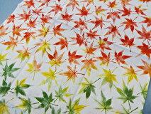 【手ぬぐい紅葉便り】【捺染】【濱文様】秋柄てぬぐい小紋モミジ