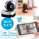 ネットワークカメラ(スマホ/iPhone視聴対応・WiFiカメラ・720pHD画質・赤外線撮影・動体検知対応) EZ4-CAM051【送料無料】