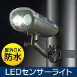 LEDセンサーライト(屋外・ソーラー・充電・防水・防雨・明るい・強力) EEX-LEDSR02【送料無料】