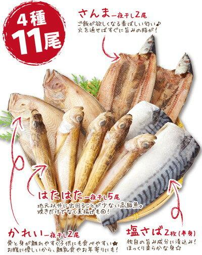 お試し!うす塩干物セット4種11尾