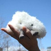 Jellycat Amuseables  Cloud  Small_A6CL ジェリーキャット 愉快な 雲 くも ふわふわ ぬいぐるみ  ギフト 癒し プレゼント お祝い 出産祝い 誕生日 最高級 縫いぐるみ ソフト ドール  正規代理店 輸入品