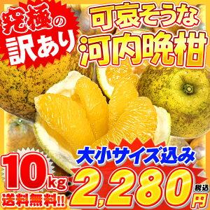 可哀そう ジュース ゴールド ジューシーフルーツ ナダオレンジ グレープフルーツ