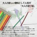 COLLEEN コーリン色鉛筆 775 六角48色紙箱入り色鉛筆 カラーえんぴつ ぬり絵 趣味 学校 美術 2