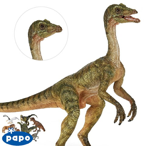 【メール便可】PAPO パポ社 コンプソグナトゥス フランス、PAPO(パポ社)のDinosaurs ダイナソーシリーズ、恐竜のフィギュア。リアルな表情が魅力のフィギュアです。