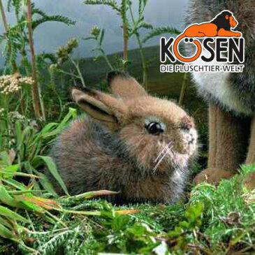 KOESEN ケーセン社 野うさぎの子 5090〜ドイツ・KOESEN/KOSEN(ケーセン社)の動物のぬいぐるみ。愛らしい表情の兎(うさぎ/ウサギ)のぬいぐるみです。出産祝い クリスマス プレゼント 結婚記念日 出産したママへのご褒美にもおすすめ