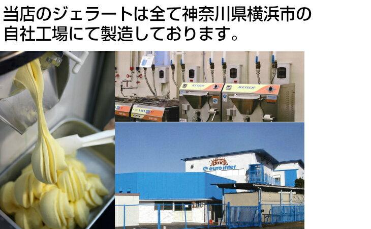 業務用2L青森白桃×2本セット【RCP】