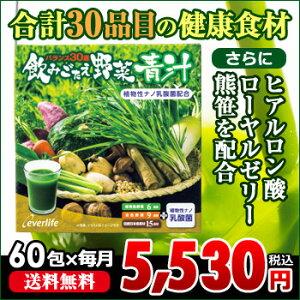 【毎月お届け定期】飲みごたえ野菜青汁 60包(約1ヶ月分)30品目の国産野菜・食材をバランス良く配合