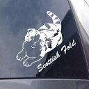 猫種名入り スコティッシュフォールド リアル猫シルエットステッカー 30cm 猫ステッカー 車ステッ ...