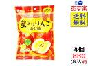 ライオン菓子 蜜入りりんごのど飴 73g 4コ入り 賞味期限