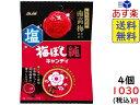 アサヒグループ食品 梅ぼし純キャンディ 88g ×4袋 賞味期限2022/06