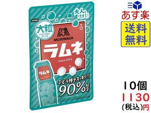 森永製菓 大粒 ラムネ 41g×10袋 賞味期限2021/10