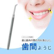 歯科用スケーラ歯間ようじシルバー40438デンタルケア用品一般医療機器歯間ようじ歯垢取り除去ピーティーアンドサヒ