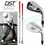 DST GOLF日本正規品CR−10モデル(直線シャフト)「スイングトレーニングゴルフ練習用品」【あす楽対応】
