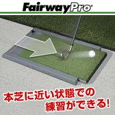 FairwayPro(フェアウェイプロ)練習用マット「ゴルフ練習用品」