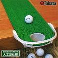 2015新製品TABATA(タバタ)玄関パターマット「GV−0137」「ゴルフ練習用品」【あす楽対応】
