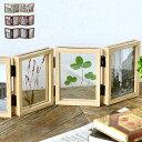 リンキングフレーム フォトフレーム 置き型 L版 ×8枚 木製 複数 おしゃれ 写真立て 押し花 折りたたみ 両面 ギフト プレゼント 北欧 木目