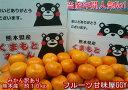 みかん 訳あり 約10kg(箱込10kg 9kg+保証分500g)熊本産 ご家庭用 フルーツ 果物【送料無料】(一部の地域を除く)