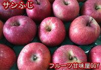 シナノスイート約10kg【約20〜50玉】長野・青森産りんごリンゴ林檎グルメ