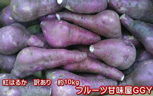 紅はるか蔵出し訳あり箱込10キロ(9kg+保証分500g)さつまいも蜜芋熊本産サイズ大・中・小 指定不可   一部の地域を除く