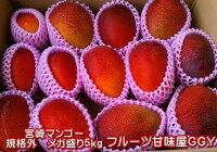 【完熟】宮崎マンゴー【規格外】加工用メガ盛り5キロマンゴー【送料無料】一部の地域を除く