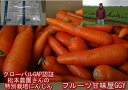 松本農園さんの特別栽培にんじん 訳あり 1箱約10kg(9kg+保証分500g)安心安全 特別栽培農産物 世界が認めたグローバルGAP認証 無農薬 有機栽培 ジュース用 にんじん生活 人参