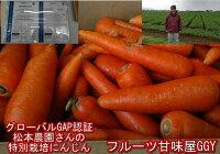 安心安全特別栽培農産物世界が認めたグローバルGAP認証松本農園さんの特別栽培にんじん訳あり1箱約10kg(9kg+保証分500g)