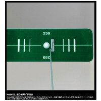 ダイヤ(DAIYA)ダイヤオートパットTR-522パターマット