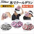 タイトリスト 氷嚢(ひょうのう) アイスバッグ 冷却 AJIP51 【ゴルフグッズ用品】