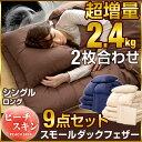 【送料無料】【当店限定 超大増量2.4kg 収納ケース付】 ...