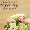 【単品購入不可】おまかせアレンジメント・花束用お花のご予算を20000円分ランクアップにてご利用いただけます。単品ではご利用いただけません。季節のお任せアレンジメント・花束、御供アレンジメント・花束以外の商品はご利用不可です。