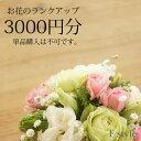 【単品購入不可】おまかせアレンジメント・花束用お花のご予算を3000円分ランクアップにてご利用いただけます。単品ではご利用いただけません。季節のお任せアレンジメント・花束、御供アレンジメント・花束以外の商品はご利用不可です。