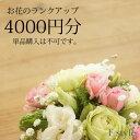 【単品購入不可】おまかせアレンジメント・花束用お花のご予算を4000円分ランクアップにてご利用いただけます。単品ではご利用いただけません。季節のお任せアレンジメント・花束、御供アレンジメント・花束以外の商品はご利用不可です。