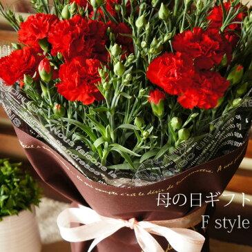 母の日 花 カーネーション 鉢花 2019 送料無料 お母さんありがとう!赤・ピンク色から選べるカーネーション5号鉢 フラワーギフト 母の日 ギフト 鉢植え 鉢 花鉢 カーネーション花鉢