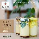 【ふるさと納税】〜新鮮オーガニック牛乳を使用〜手づくりプリン