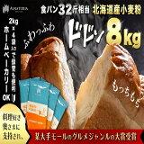 【ふるさと納税】北海道産小麦【春よ恋】10kg(2kg×5袋)パン用強力粉 【パン・加工食品・パン用強力粉・小麦粉・食パン】