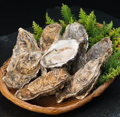 【ぷりっぷりで濃厚!】釧路管内産【活】牡蠣(特大)10個