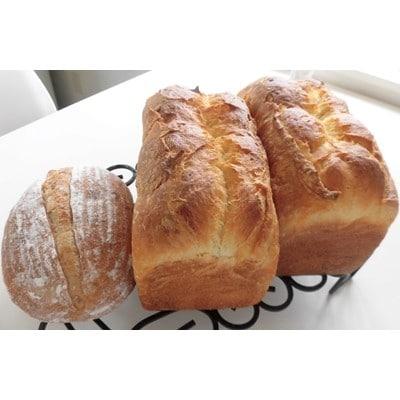 【ふるさと納税】2021年8月発送開始『定期便』高級食パン「Le carrefour」2本と天然酵母パン1個全4回【5013367】