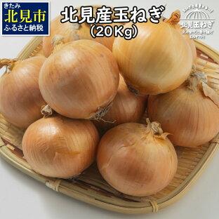【ふるさと納税】【A-062-09】【2021年9月下旬から順次発送】北海道北見産 玉ねぎ 20kgの画像