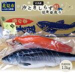 【ふるさと納税】【A-269】汐ときしらず鮭約1.5kg切身姿造り