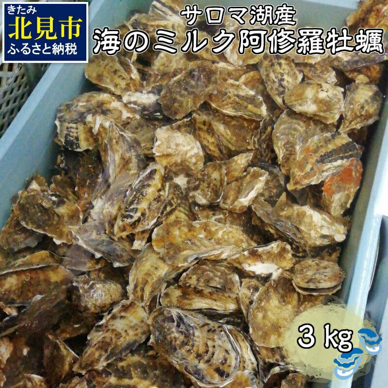 【ふるさと納税】【Z8-001】サロマ湖産海のミルク阿修羅牡蠣