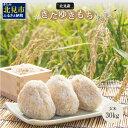 【ふるさと納税】【C-064】北海道産きたゆきもち玄米30kg
