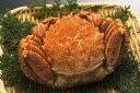 【ふるさと納税】オホーツク産 茹で毛ガニ 約500g×1尾