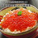 北海道網走産冷凍いくら醤油漬500g