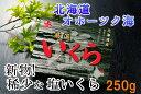 【ふるさと納税】【新物!】塩いくら250g...