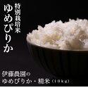 【ふるさと納税】伊藤農園の特別栽培米ゆめぴりか・精米(10kg)