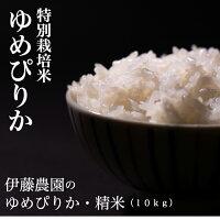 伊藤農園 特別栽培米 ゆめぴりか 精米 10kg