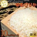 【ふるさと納税】新米ゆめぴりか10kg【芦別農家直送】 北海道 芦別市