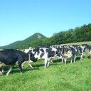 【ふるさと納税】20-85 牧場体験 ミルクジャムセット付